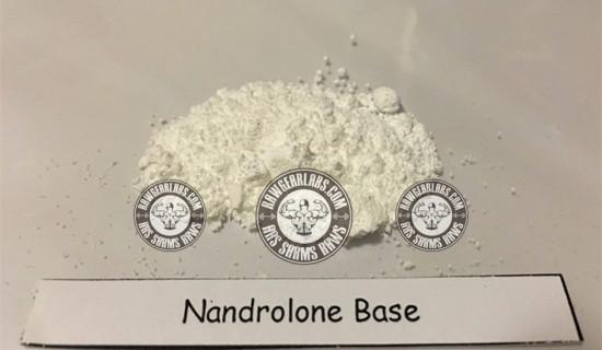 nandrolone-base